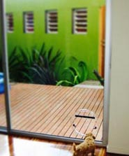 Cat door in Prahran by Ometek Glass