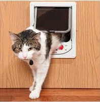 Sml-Med Electromagnetic Cat Door by Cat Mate